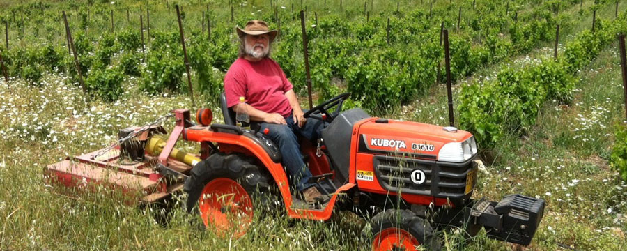 Zeev-tractor-in-vineyard
